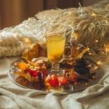 Te med denbuckthorn bär och ingefäran på sidor för gamla böcker, honung-, stearinljus- och höst Atmosfären av komfort hemma cozy royaltyfria bilder
