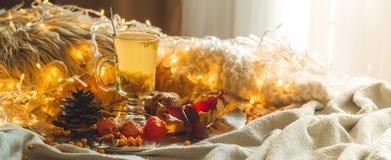 Te med denbuckthorn bär och ingefäran på sidor för gamla böcker, honung-, stearinljus- och höst Atmosfären av komfort hemma cozy royaltyfri fotografi