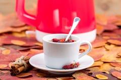 Te med en dogrose och en kanel Fotografering för Bildbyråer