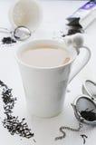 Te med mjölkar i sprucken vit porslinkopp med katten Royaltyfri Bild