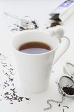 Te med mjölkar i sprucken vit porslinkopp med katten Arkivfoto