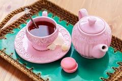 Te med rosa makrondata och vaggar sockernabot Arkivfoto