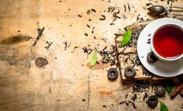 Te med sidor och kanel Arkivfoton
