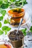 Te mint tea tea för glass växt- för horsetail för fokus för arvensekoppequisetum selektiv naturmedicin för avkok Mintkaramellblad Arkivbild
