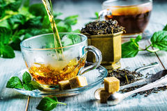 Te mint tea tea för glass växt- för horsetail för fokus för arvensekoppequisetum selektiv naturmedicin för avkok Mintkaramellblad Royaltyfria Bilder