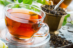 Te mint tea tea för glass växt- för horsetail för fokus för arvensekoppequisetum selektiv naturmedicin för avkok Mintkaramellblad Royaltyfri Fotografi