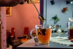 Te och honung Royaltyfri Foto