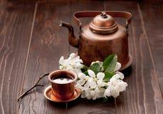 Te- och vitvårblommor royaltyfri bild