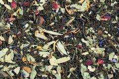 Te på basen av grönt kinesSencha te, sennabladsidor, steg Royaltyfri Foto