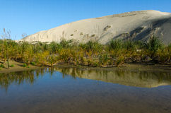 Te Paki Sand Dunes Royalty Free Stock Photo