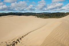 Te Paki sand dunes, New Zealand Royalty Free Stock Photos