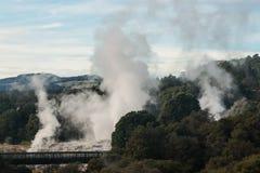 Te Puia dans Rotorua images stock