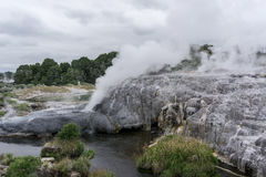 Te puia geothermal valley Stock Photography