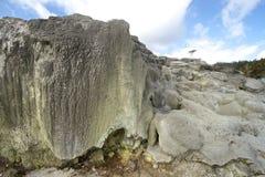 Te Puia Rotorua New Zealand Foto de Stock