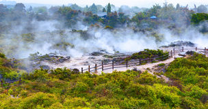 Te Puia thermal park. Rotorua town, New Zealand Stock Photos