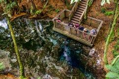Te Puna-a-Hangurua in the Hamurana Springs, Rotorua New Zealand. Royalty Free Stock Photo