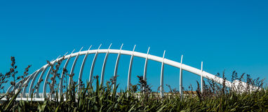 Te Rewa Rewa Bridge Royalty Free Stock Photo