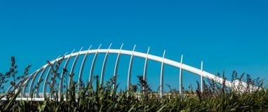 Te Rewa Rewa Bridge Royalty Free Stock Photo