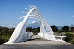 Te Rewarewa人行桥在Taranaki 库存照片