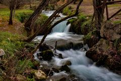 Te river royalty free stock photo