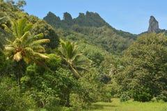 Te Rua Manga Rarotonga Cook öar Royaltyfria Foton