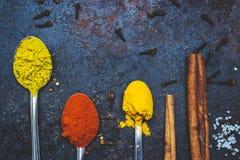 Te skedar mycket av kryddor, på svart bakgrund; med kopieringsutrymme arkivbilder