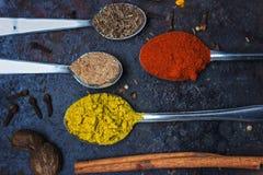 Te skedar mycket av kryddor, på svart bakgrund; med kopieringsutrymme royaltyfri foto