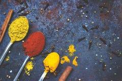 Te skedar mycket av kryddor, på svart bakgrund; med kopieringsutrymme arkivfoto
