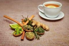 Te spricker ut i träskedar med limefrukt, ingefäran och koppen med ingefäran royaltyfria foton