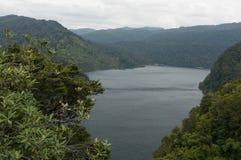 Te Urewera National Park Imagen de archivo libre de regalías