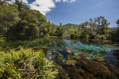 Te Waikoropupu Springs Fotos de Stock
