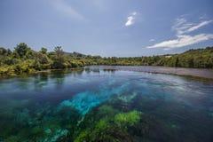 Te Waikoropupu Springs imagem de stock royalty free