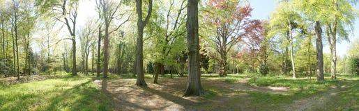 Te Warmond de Huys do parque Fotografia de Stock