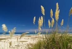 Te Werahi beach Stock Image