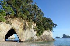 Te Whanganui-A-Hei (angra) da catedral Marine Reserve Imagem de Stock