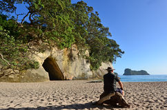 Te whanganui-a-Hei (Kathedraalinham) Marine Reserve stock foto