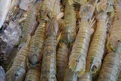 Te zachte, verse bidsprinkhanengarnalen voor verkoop in de vissenmarkt in Thailand stock foto's