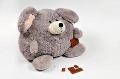 Te zware muis die chocolade eet Stock Fotografie