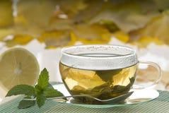 Tea. Cupful of tea with lemon Stock Image