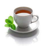 Tea. With Mint isolated on a white background royalty free stock photo