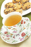 Tea. Cup with the green tea and the  cookies Royalty Free Stock Photos