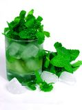 Tea. Green tea and mint on ice glass Stock Images