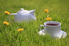 Tea. A cup of tea and a kettle in the grass with dandelions Royalty Free Stock Images