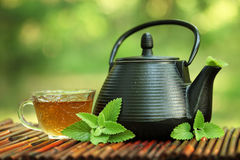 Free Tea Stock Image - 19600951