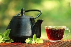 Free Tea Stock Photography - 19916732