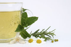 Tea-2 de fines herbes Images libres de droits