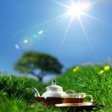 Tea Stock Image