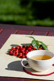 Tea. Still life with cup of tea, rose-hips and leaf of creeper Stock Images