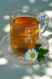 Tea. Fresh tea with mint and flower Stock Image