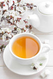 Tea. Fresh herbal tea in a cup Royalty Free Stock Photo